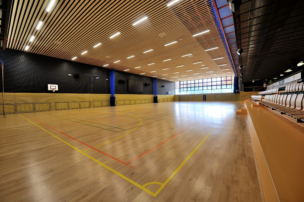 The Věra Čáslavská Sports & Athletic Hall in Černošice